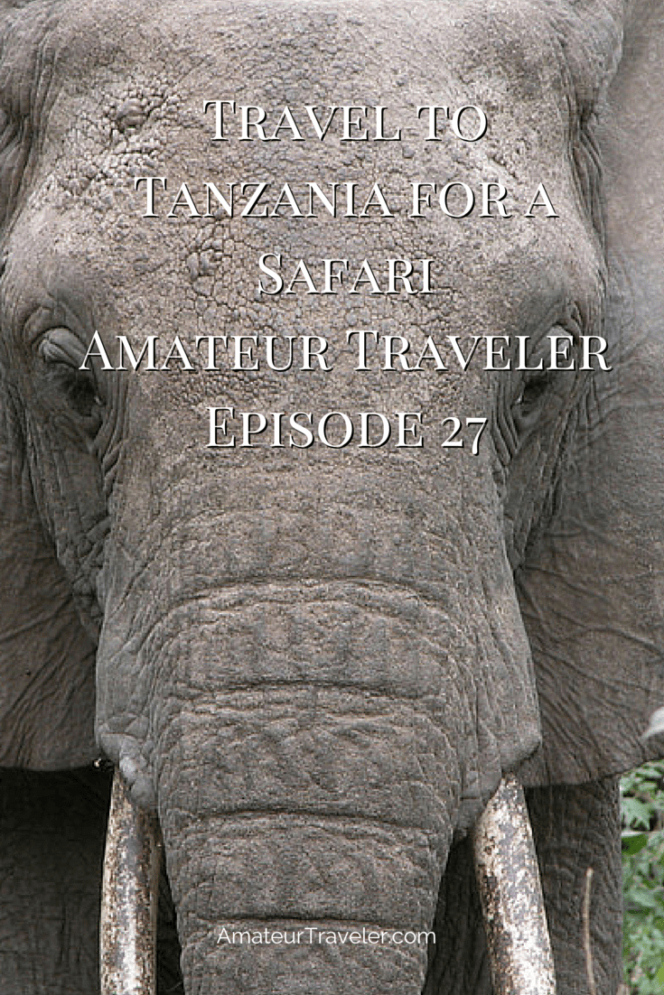 Travel to Tanzania for a Safari – Amateur Traveler Episode 27