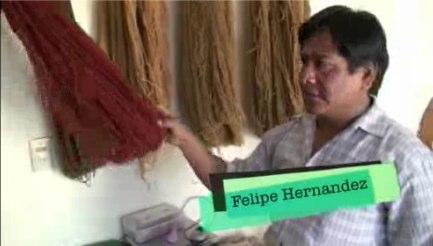 felipe-hernandez-weaver