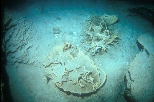 turtle tomb (cave at sipadan island)