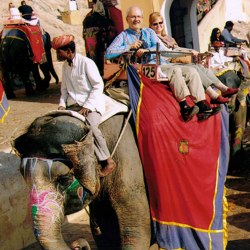 Travel to India – Episode 317