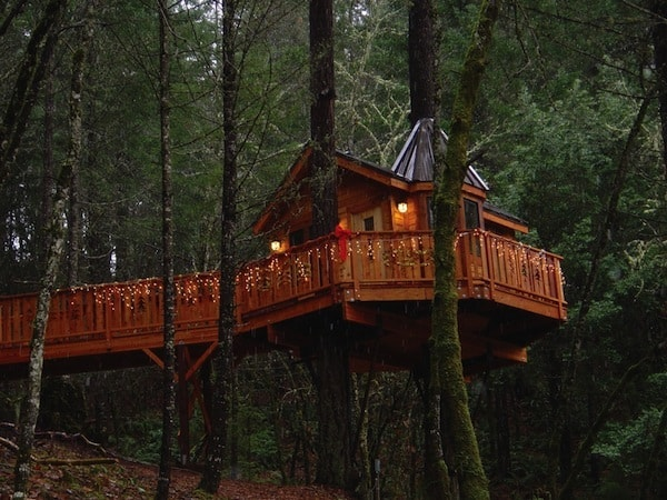 10 Great Treehouse Hotels Amateur Traveler