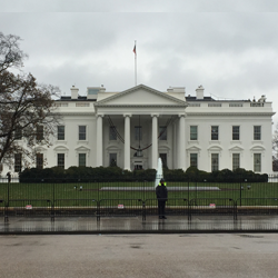 The White House Wants You To Study Abroad