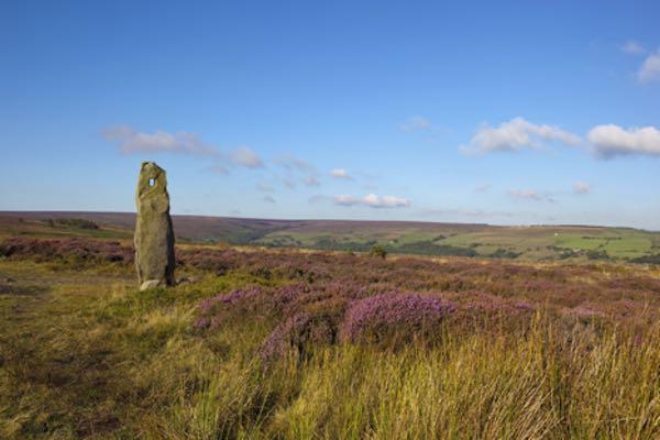 North York Moors Ulusal Parkı - İngiltere