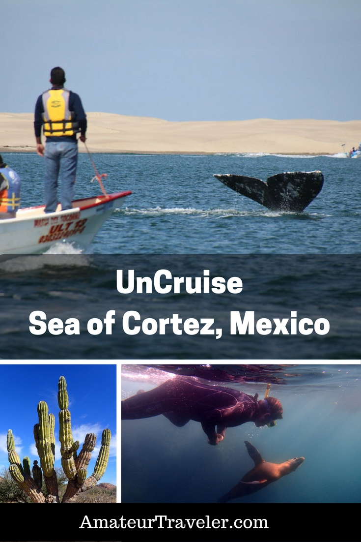 Small Ship Cruise on UnCruise In the Sea of Cortez - Baja Sur, Mexico