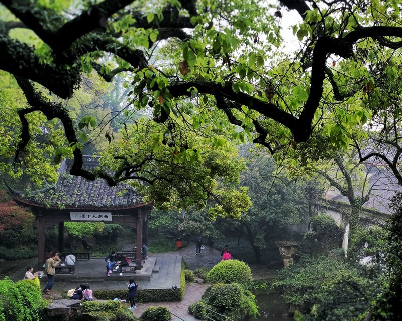 Hangzhou, The Scenery, Ching Ming, Park, Garden