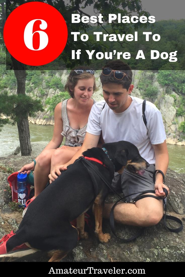 Köpeğinize Seyahat Edilecek En İyi 6 Yerler