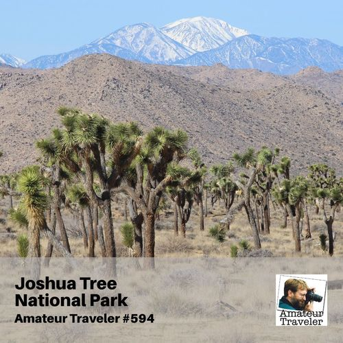 Travel to Joshua Tree National Park – Episode 594