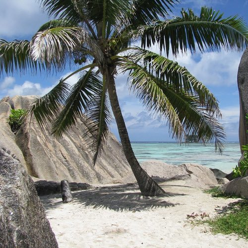 The Seychelles Islands – The Perfect Destination For Your Next Beach Holiday