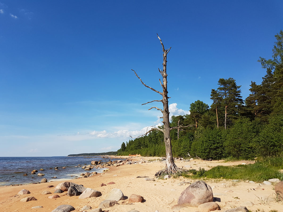 Vidzeme Stony Beach – The eastern coast of the Gulf of Riga