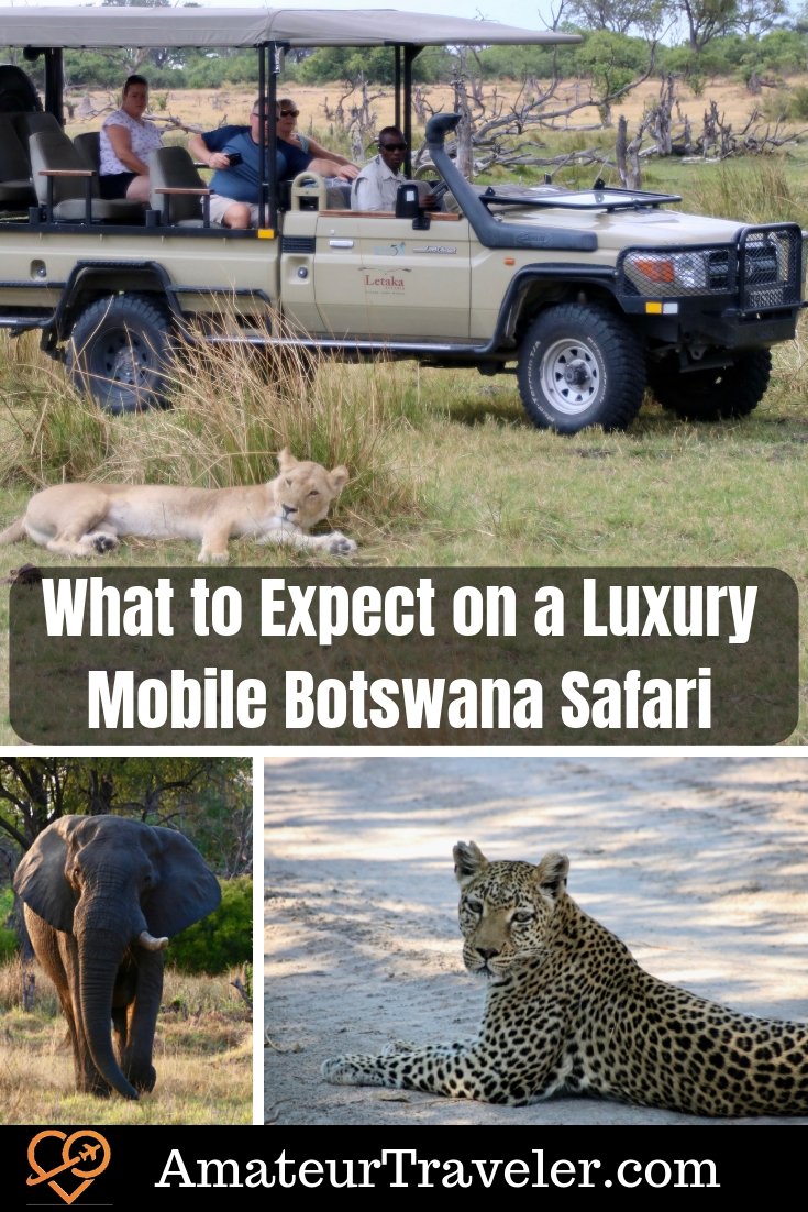 Luxury Mobile Safari in Botswana - What to Expect | When to go to Botswana