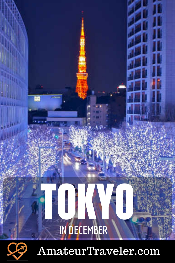 Tokyo'da Aralık'ta Ne Yapmalı #tokyo #japan #december #travel