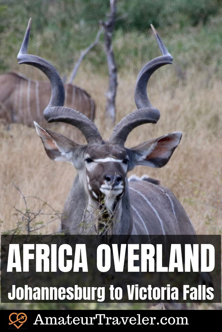 Africa Overland - Tour from Johannesburg, South Africa to Victoria Falls, Zimbabwe | Intrepid Travel in Southern Africa #africa #safari #south-africa #botswana #zimbabwe #zambia #tour #itinerary #overland #travel #trip #vacation #adventure #camping