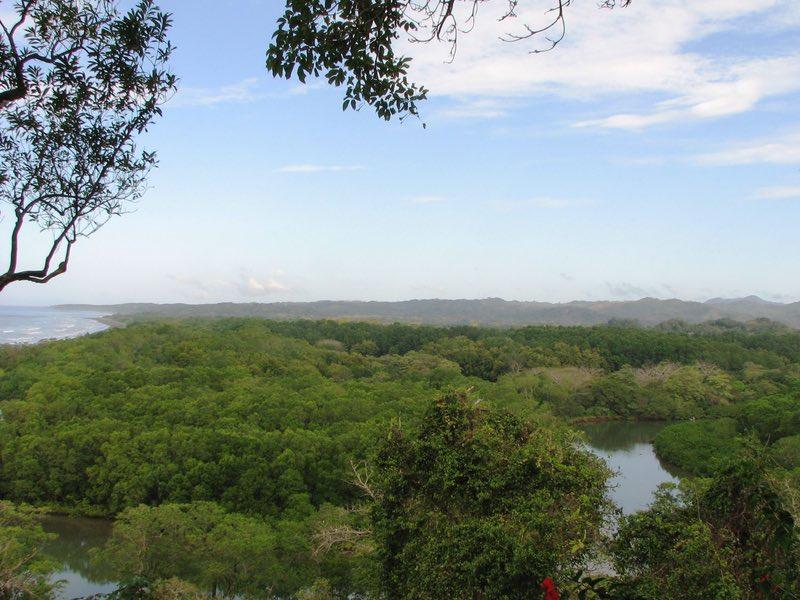 Vista desde Lagarta Lodge de Nosara Rive