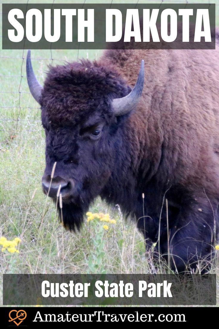 Güney Dakota ve Güney Dakota Ulusal Parklarına Yolculuk | Güney Dakota Black Hills bölgesinde yapılacaklar | Rushmore Dağı Tatil #travel #trip #vacation # güney-dakota #usa # yol-seyahat # dağı-rushmore # custer-eyalet-park #bison #deadwood # denizci-füze # sylvan-göl # iğneler-karayolu # kara tepeler # duvar ilacı # hızlı şehir # şeyler yapılacak şeyler #badlands #hiking # spearfish-canyon