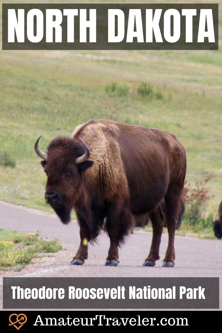 Kuzey Dakota - Theodore Roosevelt Ulusal Parkı, Medora Müzikali ve Büyülü Karayolu Yolculuğu #travel #trip #vacation #usa # kuzey-dakota #badlands #bison # enchanted-highway park