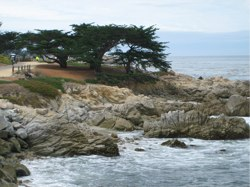 7 of the Best Things to Do, Buy or Eat in and around Monterey, California